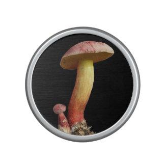 Vivid mushroom speaker