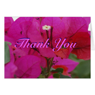 Vivid Pink Bougainvillea Thank You Card