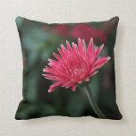 Vivid Pink Gerbera Daisy on Green Background Pillows
