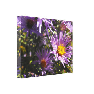 Vivid Purple Aster with Yellow Floral Pring Canvas Print