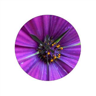 Vivid Purple Daisy Round Wallclock