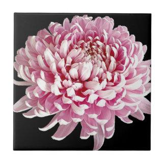 Vivid Purple Flower Ceramic Tile