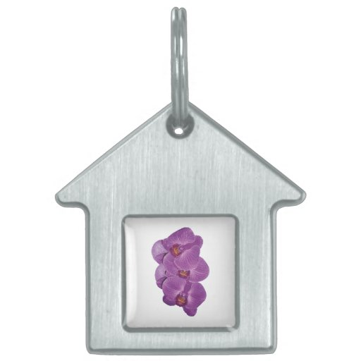 Vivid Purple Orchids Pet ID Tag
