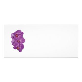 Vivid Purple Orchids Custom Rack Card