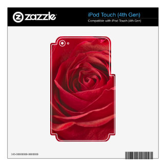 Vivid Red Rose Center Full Frame Macro Photograph Decals For iPod Touch 4G
