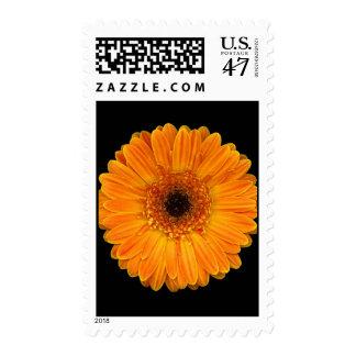 Vivid Sun Flower Postage