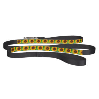 Vivid Sunflower Dog Leashes