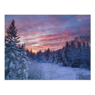 Vivid sunset paints the sky above wintery postcards