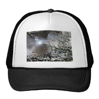 Vivid Winter Trucker Hat