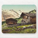Vivienda suiza, Murren, Bernese Oberland, Switzerl Tapete De Raton