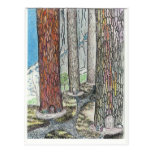 Vivimos en los árboles tarjeta postal