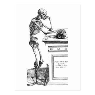 Vivitur Ingenio - Skeleton Postcard