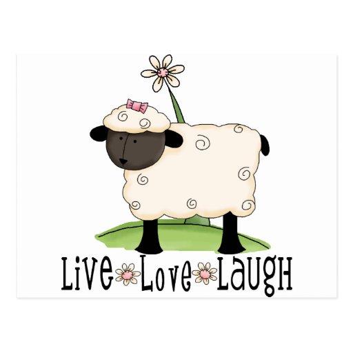 vivo-amor-risa-ovejas postal