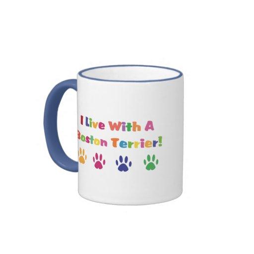 Vivo con una Boston Terrier Taza