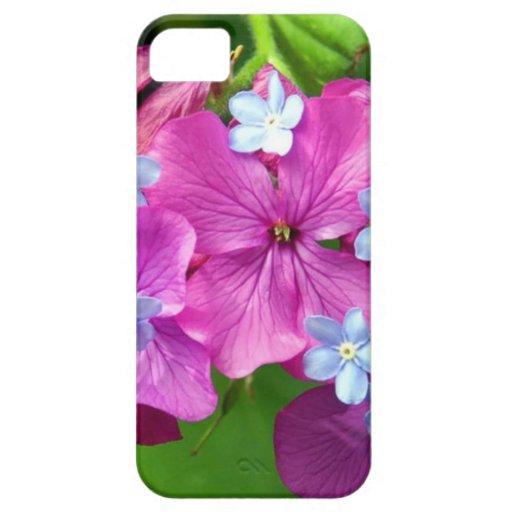 Vivo iPhone 5 Carcasas