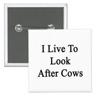 Vivo para ocuparme vacas
