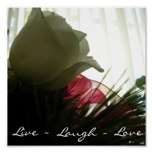 Vivo, risa, amor póster