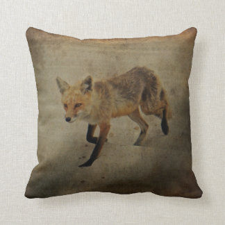 Vixen del Fox rojo - parque de estado de la playa  Almohadas