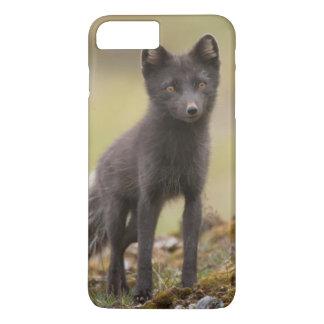 Vixen searches for food iPhone 8 plus/7 plus case