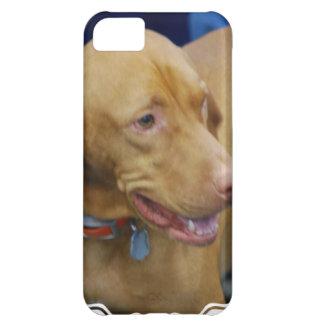 vizsla-4.jpg iPhone 5C case