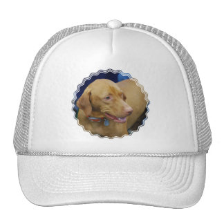 Vizsla  Baseball Hat