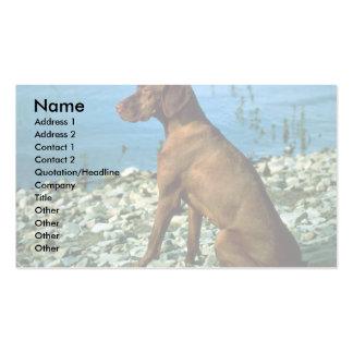 Vizsla Business Card