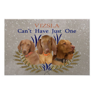 Vizsla Can't Have Just One Poster