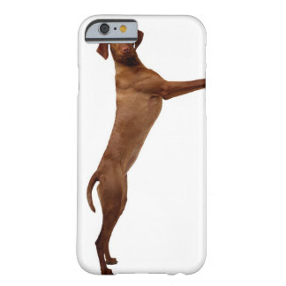 Vizsla Dog Barely There iPhone 6 Case