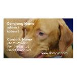 Vizsla Dog Business Cards