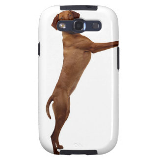 Vizsla Dog Samsung Galaxy S3 Covers