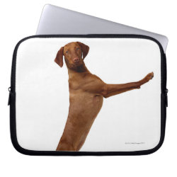 Neoprene Laptop Sleeve 10 inch with Vizsla Phone Cases design