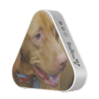 Vizsla Dog Bluetooth Speaker