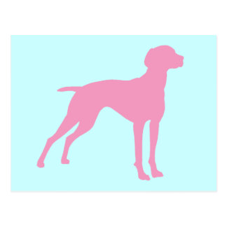 Vizsla Dog Silhouette (pink) Postcard