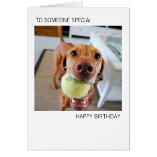 Vizsla Dog With Ball In Mouth Birthday Card