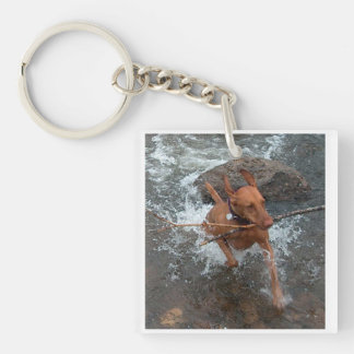 Vizsla_fetching in water.png Double-Sided square acrylic keychain