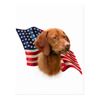 Vizsla Flag Postcard
