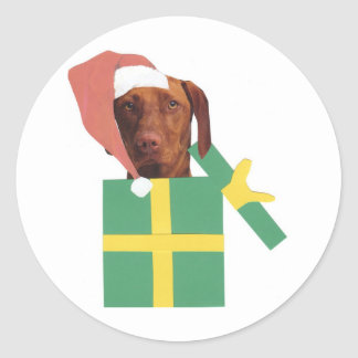 Vizsla Green Gift Box Classic Round Sticker