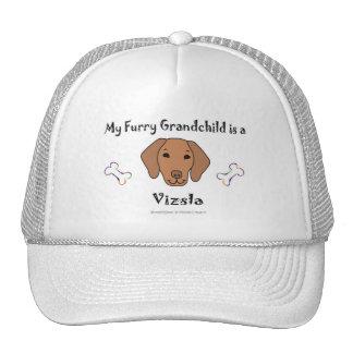 Vizsla Hats
