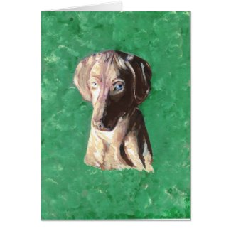 Vizsla, Hungarian Pointer Card