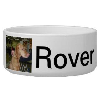 Vizsla Hungarian Pointer Pet Bowl