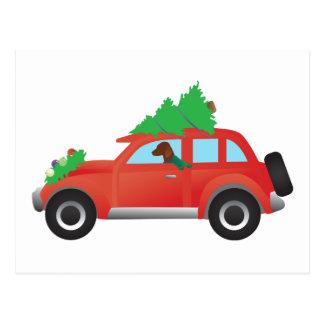 Vizsla Hunting Dog Driving a Christmas Car Postcard