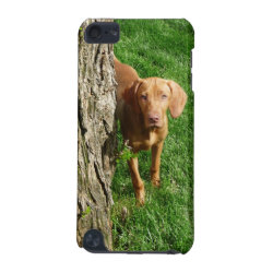Case-Mate Barely There 5th Generation iPod Touch Case with Vizsla Phone Cases design