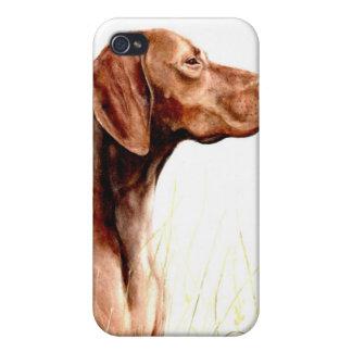 vizsla pedigrí del caso del iPhone del perro iPhone 4/4S Fundas