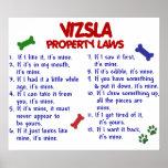VIZSLA PL2 POSTERS