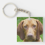 vizsla.png Double-Sided square acrylic keychain