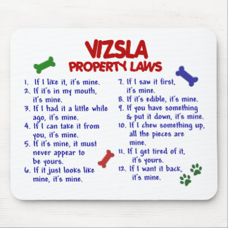 VIZSLA Property Laws 2 Mouse Pad
