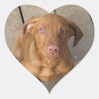 vizsla puppy heart sticker