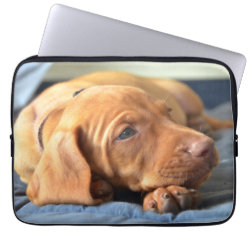 Neoprene Laptop Sleeve 13 inch with Vizsla Phone Cases design