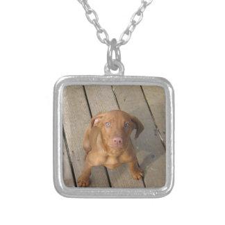 vizsla puppy silver plated necklace