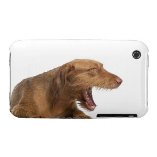 Vizsla que bosteza delante de la tierra de la part Case-Mate iPhone 3 fundas